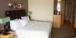 Hotel Hilton Frankfurt